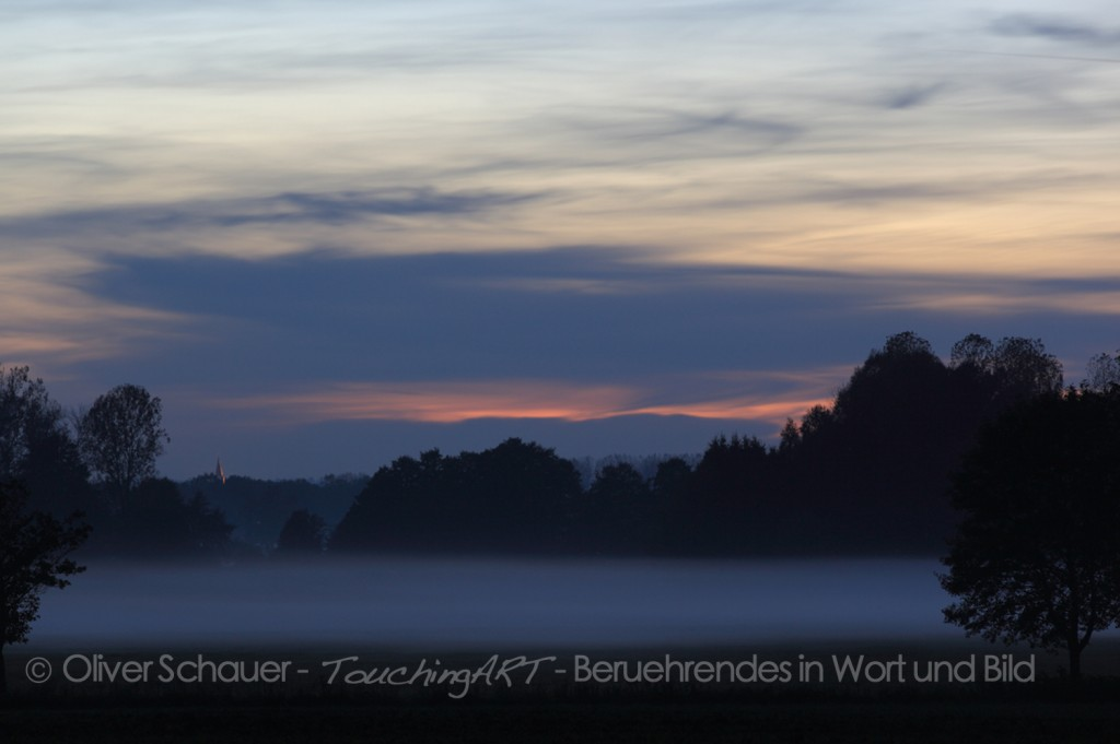 Nebel im Glonntal