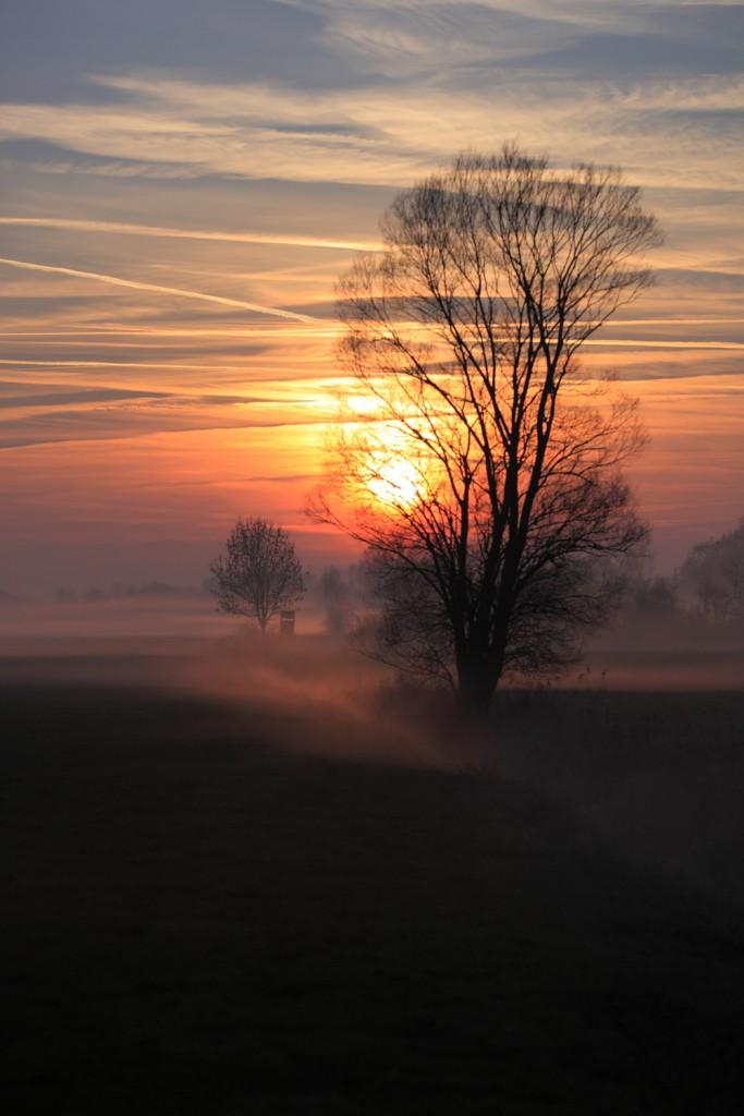 Nebelschweif