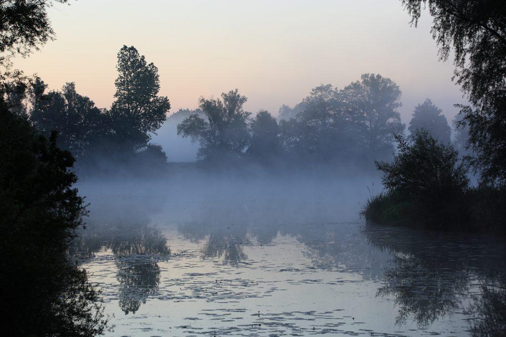 Morgennebel im Dachauer Moos